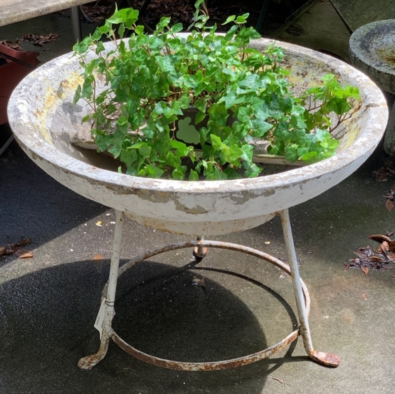 Shallow Concrete Bowl on Stand